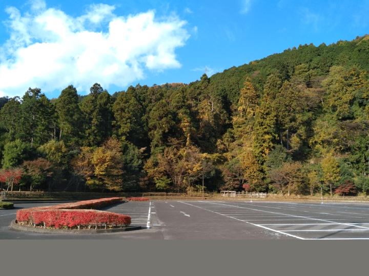 明日(12/6)開催!あいかわ公園「初心者スケートボード教室」